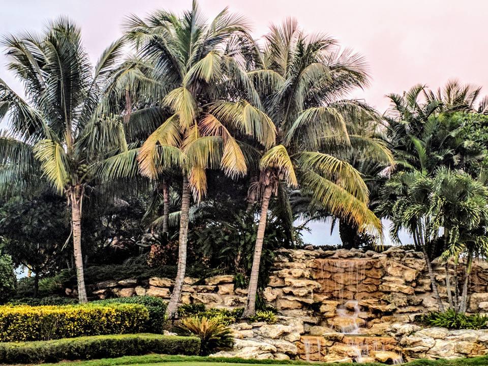 shalom shore florida